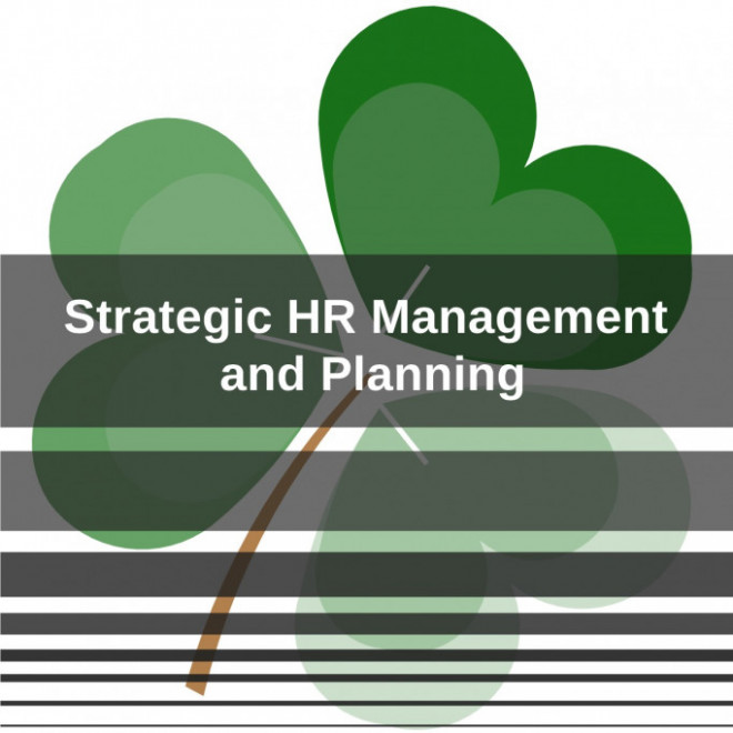 Strategic Hr Management And Planning Blog Brainy Hr Smart Human Resources Management System
